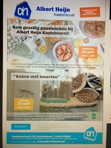 AH Kaatsheuvel insecten