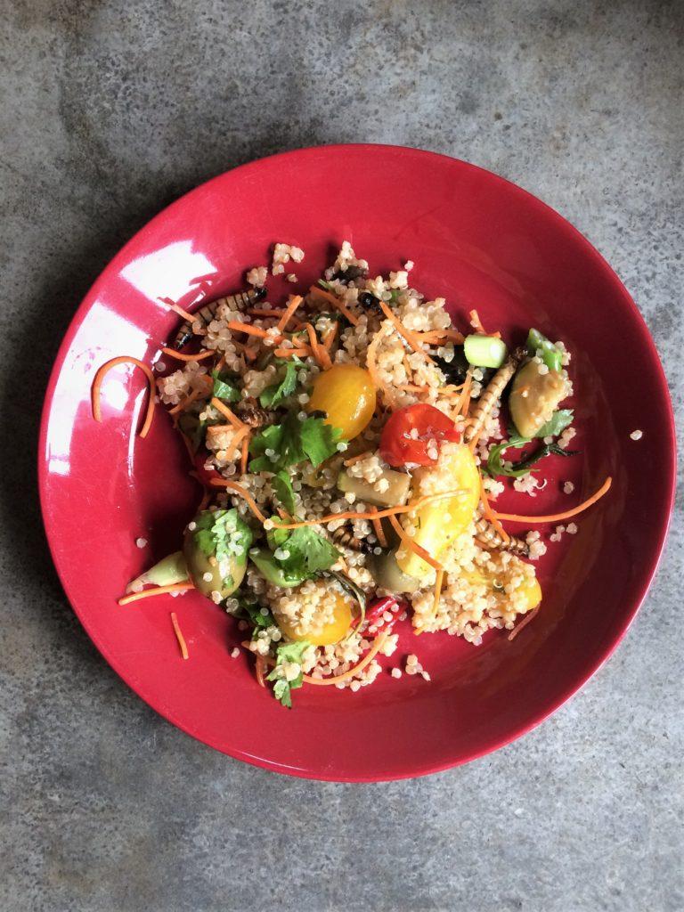morio wormen couscous